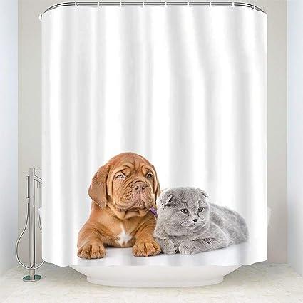 Amazon Tesdfk Animal Fabric Shower CurtainDog With Cat