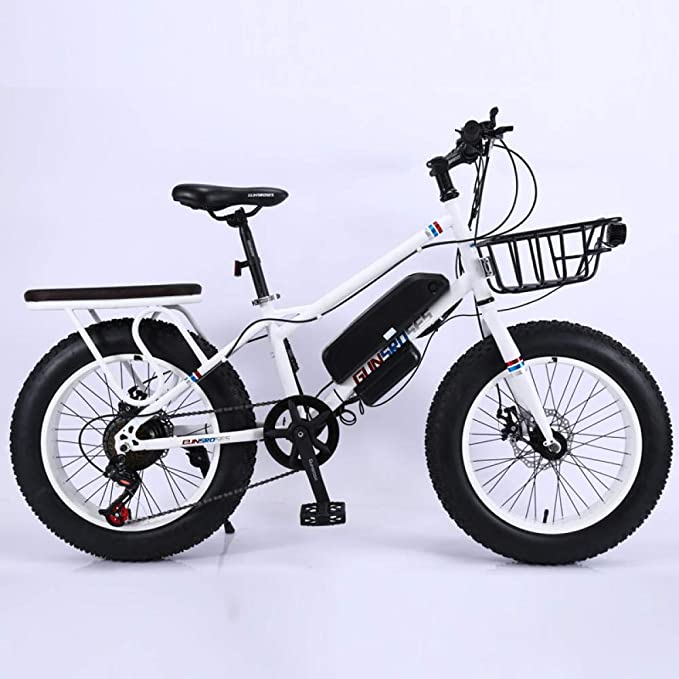 RPHP fat tire electric bicycle adult electric bicycle