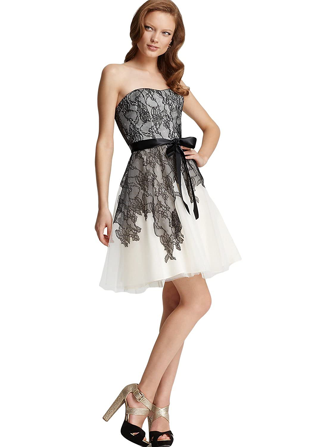 Max And Cleo Women's Cynthia Lace & Tulle Dress