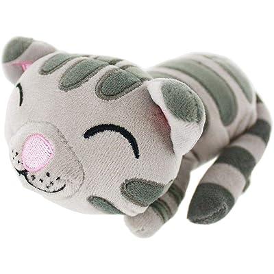 Big Bang Theory - Soft Kitty Mini Plush Toy 5 x 7in: Toys & Games