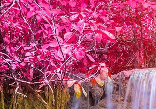 B/&D XXL murando Impression sur Toile intissee 200x100 cm 5 Pieces Tableau Tableaux Decoration Murale Photo Image Artistique Photographie Graphique Paysage Chute deau Nature c-B-0128-b-m