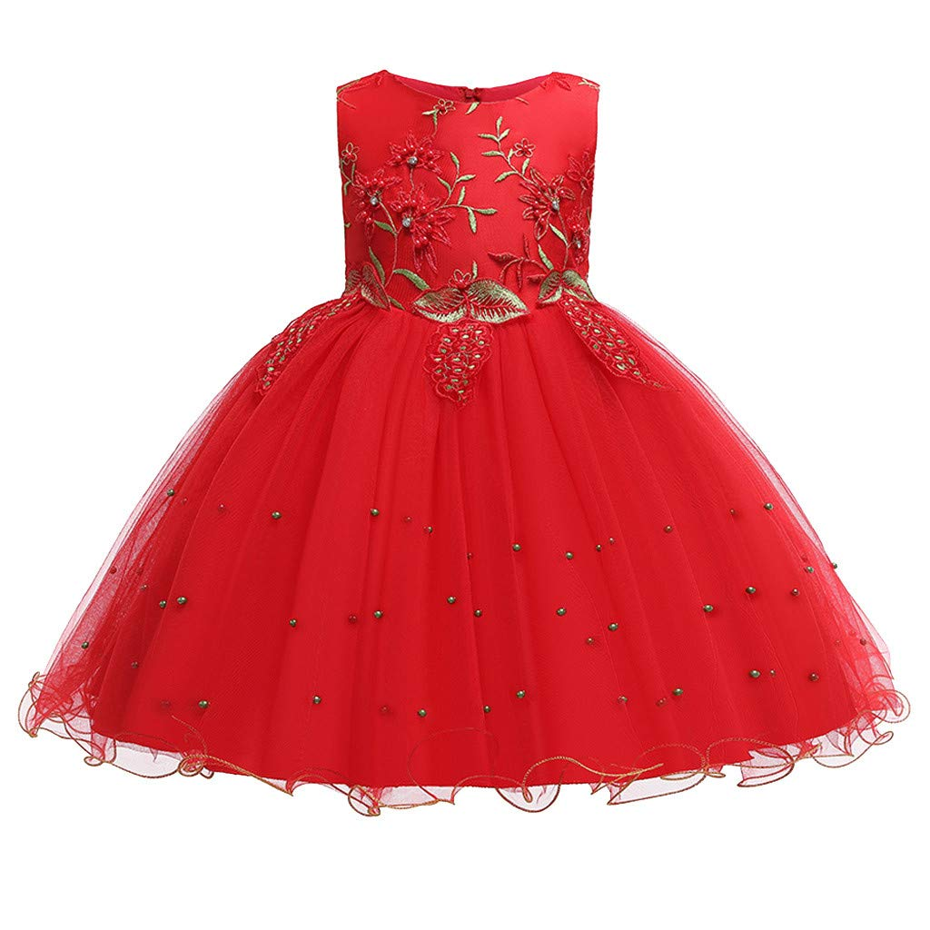 Child Girls Kids Lace Floral Ruffles Princess Performance Formal Dress Clothes