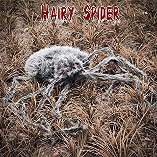 FUN LITTLE TOYS 58 Inches Giant Halloween Spider, Halloween Decorations Halloween Party Favor Party Supplies