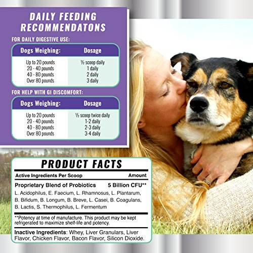 most successful Probiotics for Dogs together with Digestive Remedies