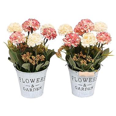 Doannotium Set of 2 Artificial Mini Potted Plants Home Decoration(Hydrangea,Yellow&Orange)