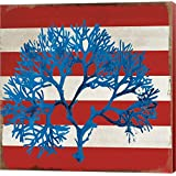Marine Coral I by Posters International Studio Canvas Art Wall Picture, Museum Wrapped with Colonial Red Sides, 12 x 12 inches