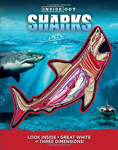 hammerhead shark kids books - 8