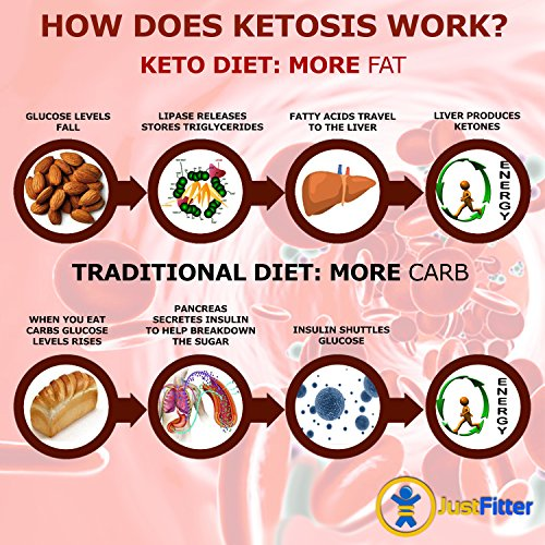 Ketone Keto Urine Test Strips. Lose Weight, Look & Feel Fabulous on a Low Carb Ketogenic or HCG Diet. Get Your Body Back! Accurately Measure Your Fat Burning Ketosis Levels by Just Fitter (Image #8)