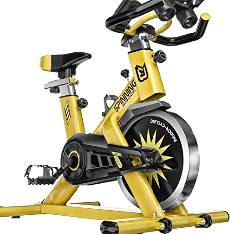 DS Equipo de la aptitud Inicio Bicicleta de Ejercicio Indoor pérdida de Peso Bicicleta Bicicleta silenciosa Ejercicio Equipo de Ejercicios&&: Amazon.es: Deportes y aire libre