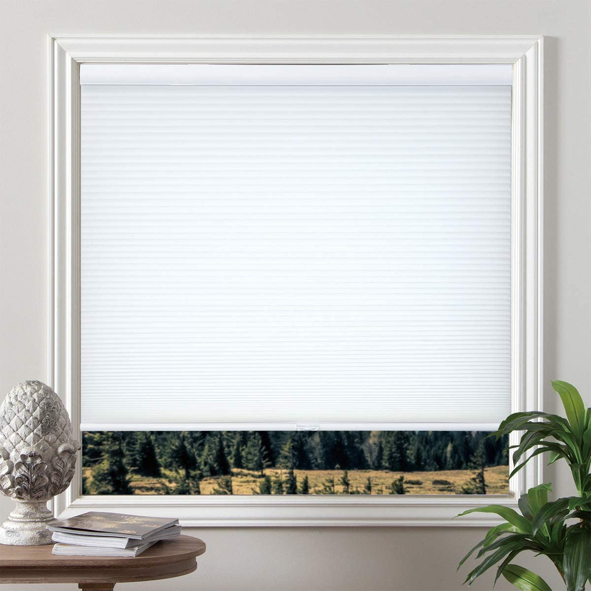 Grandekor 23 inch x 64 inch Window Blinds Cordless Cellular Shades Light Filtering Honeycomb Blinds and Shades, White Fabric Shade White