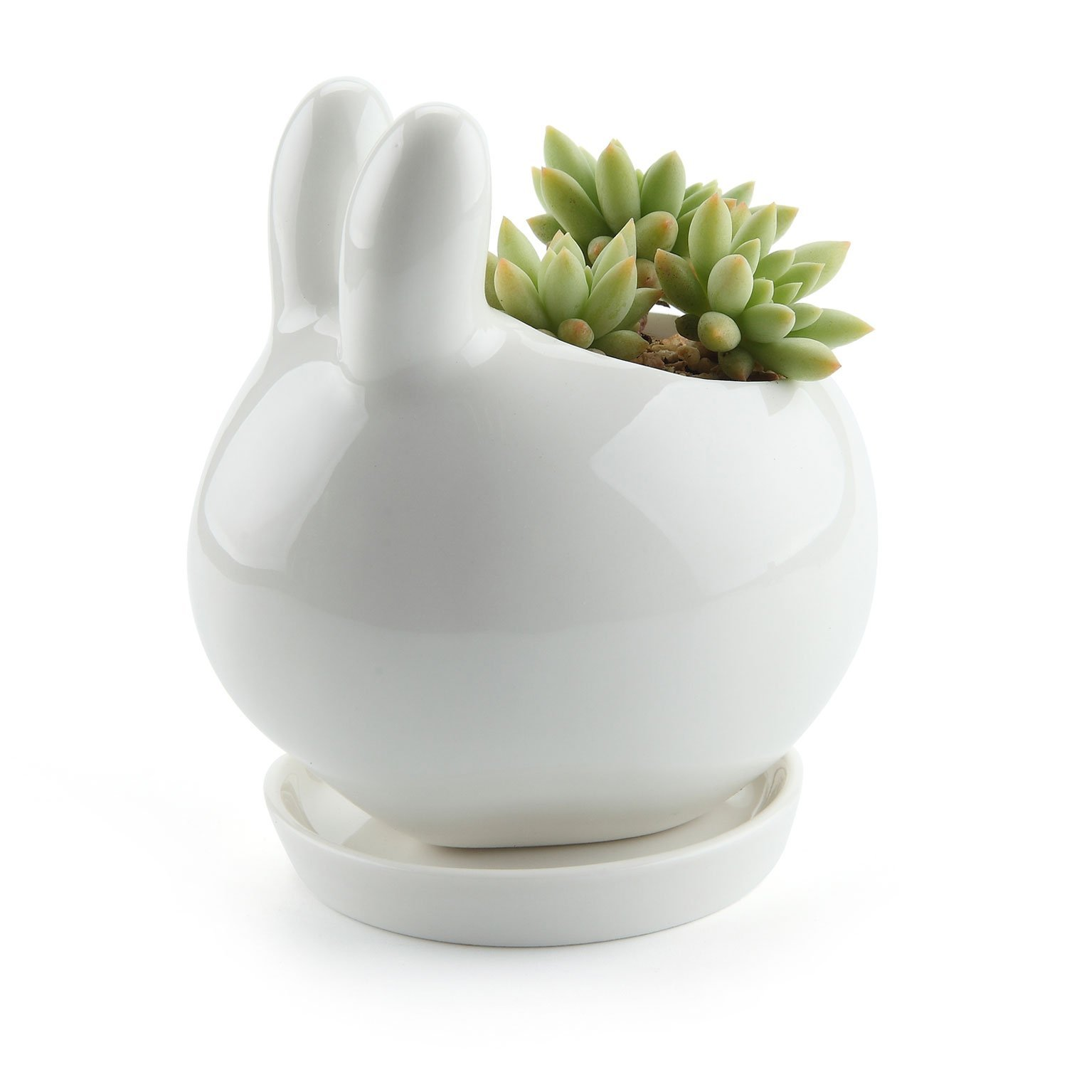 T4U Bunny Rabbit Design Ceramic Succulent Plant Pot/Cactus Flower Pots Container Porcelain Holder Planter Decoration with Round Tray - Pack of 1 by T4U