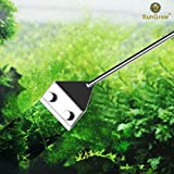 Aquarium Algae Cleaning Razor -- Keep hands dry & contamination-free - Stainless steel design ensures corrosion resistance - 2 BONUS handles for extra length - Removable and replaceable blade