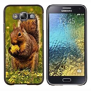 EJOOY---Cubierta de la caja de protección para la piel dura ** Samsung Galaxy E5 E500 ** --Ardilla de Brown & Nut