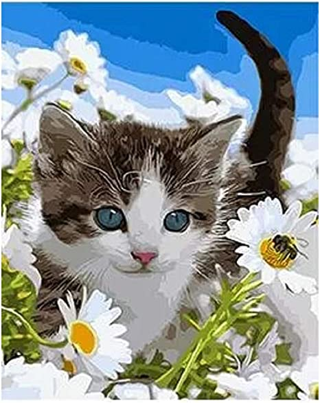 Cat and Flowers Colorful Paint By Numbers Kits DIY Number Canvas Painting Hand