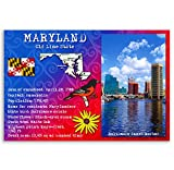 MARYLAND STATE FACTS postcard set of 20 identical postcards. Post cards with MD facts and state symbols. Made in USA.