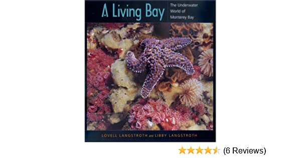 A Living Bay The Underwater World Of Monterey Bay Lovell