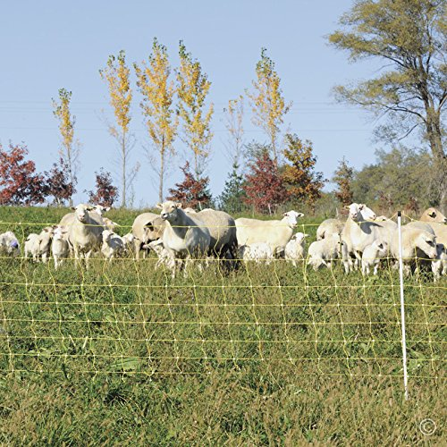 Premier 35 Electric Sheep Net Fence 8//35//6 Yellow 164 Roll