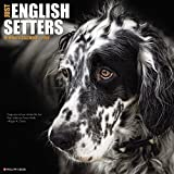 Just English Setters 2018 Wall Calendar (Dog Breed Calendar)