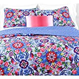 3pc Girls Pink Purple Blue Pink Red Intricate Floral Quilt King Set, Vibrant Bright Scroll Rose Daisy Paisley Flower Themed Pattern, Geometric Flowers Bohemian Bedding