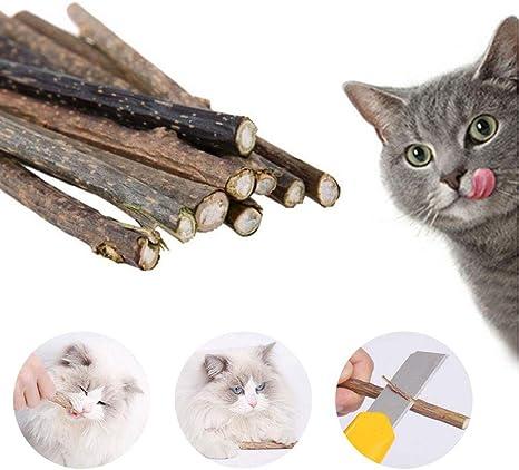 Pawaca Catnip Sticks, Dientes de Gato, Limpieza del Gato, Limpieza ...