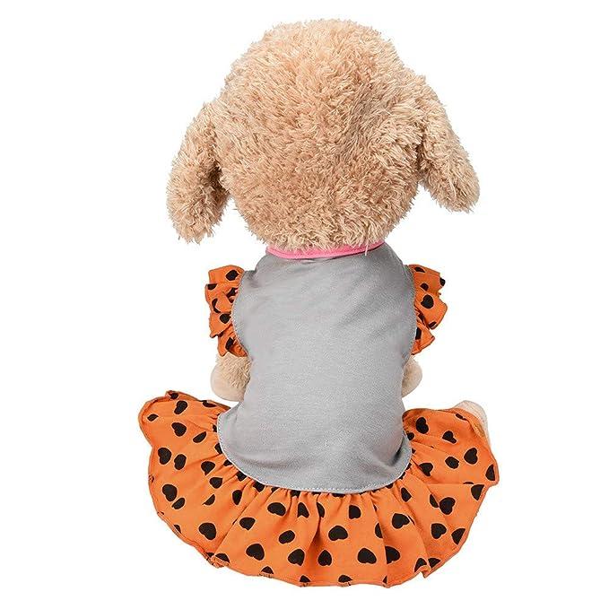 Ropa para Mascotas,Dragon868 2018 Lindos Vestidos de Naranja para Mascotas pequeños Perros Medios: Amazon.es: Ropa y accesorios