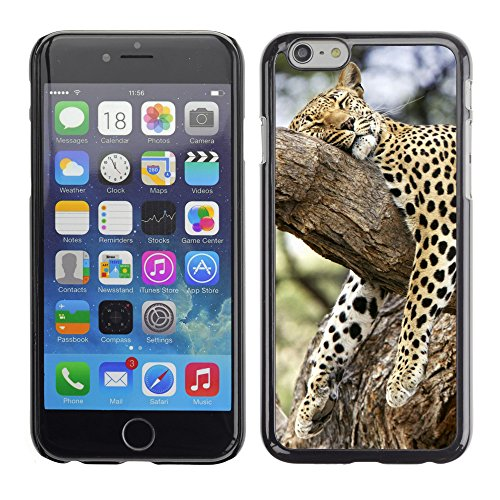 Premio Sottile Slim Cassa Custodia Case Cover Shell // V00003566 léopard dormir dans un arbre // Apple iPhone 6 6S 6G 4.7""