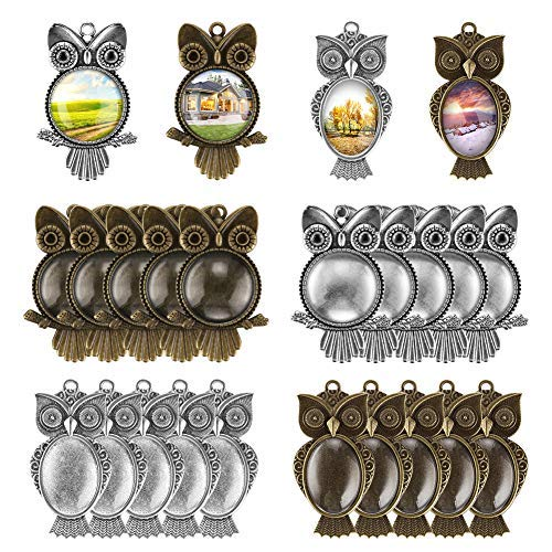 Accmor 20 Pcs Owl Pendant Trays with 20 Pcs Glass Cabochon Clear Dome, Different Shape Pendant Blank bezels for Photo Pendant Craft Jewelry Making, Totally 40 Pcs