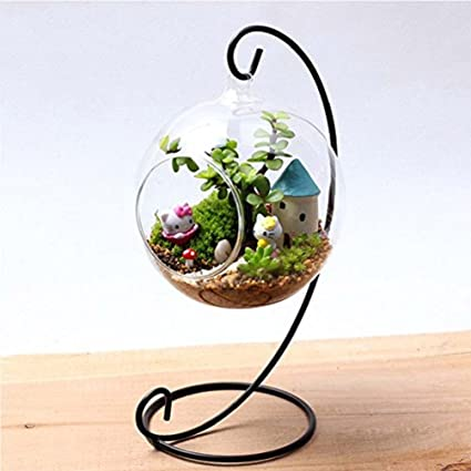 Amazon Com Terrarium Charming Clear Glass Ball Vase Air Plant