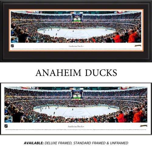 Anaheim Ducks Framed Stadium Panoramic