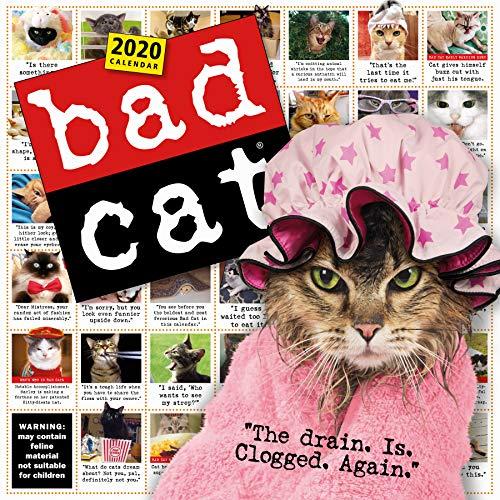 Bad Cat Wall Calendar 2020