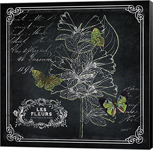 Chalkboard Botanical II by Katie Pertiet Canvas Art Wall Picture