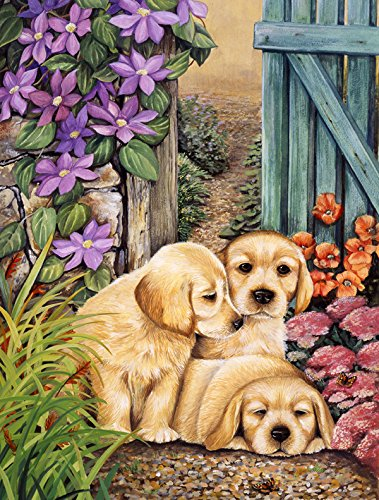 Caroline's Treasures HLH0418GF Yellow Labrador Puppies by Lesley Hallas Garden Flag, Small, Multicolor