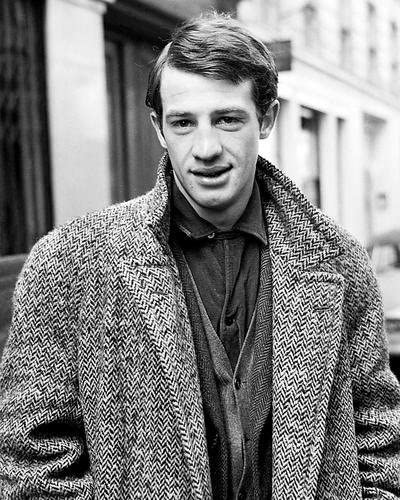 Jean-Paul Belmondo 11x14 Promotional Photograph classic young pose ...