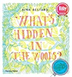 What's Hidden in the Woods?
