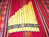 Professional Ramos  Standard Size Curved Antara Pan Flaute 13 Pipes Case Included