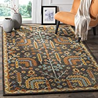Safavieh Heritage Collection HG409A Charcoal Grey and Multi Area Rug (8 Square)