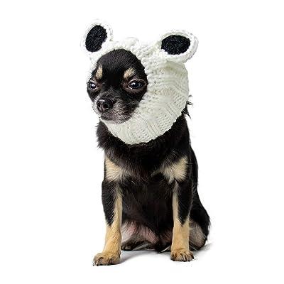 Zoo Snoods Panda Dog Costume
