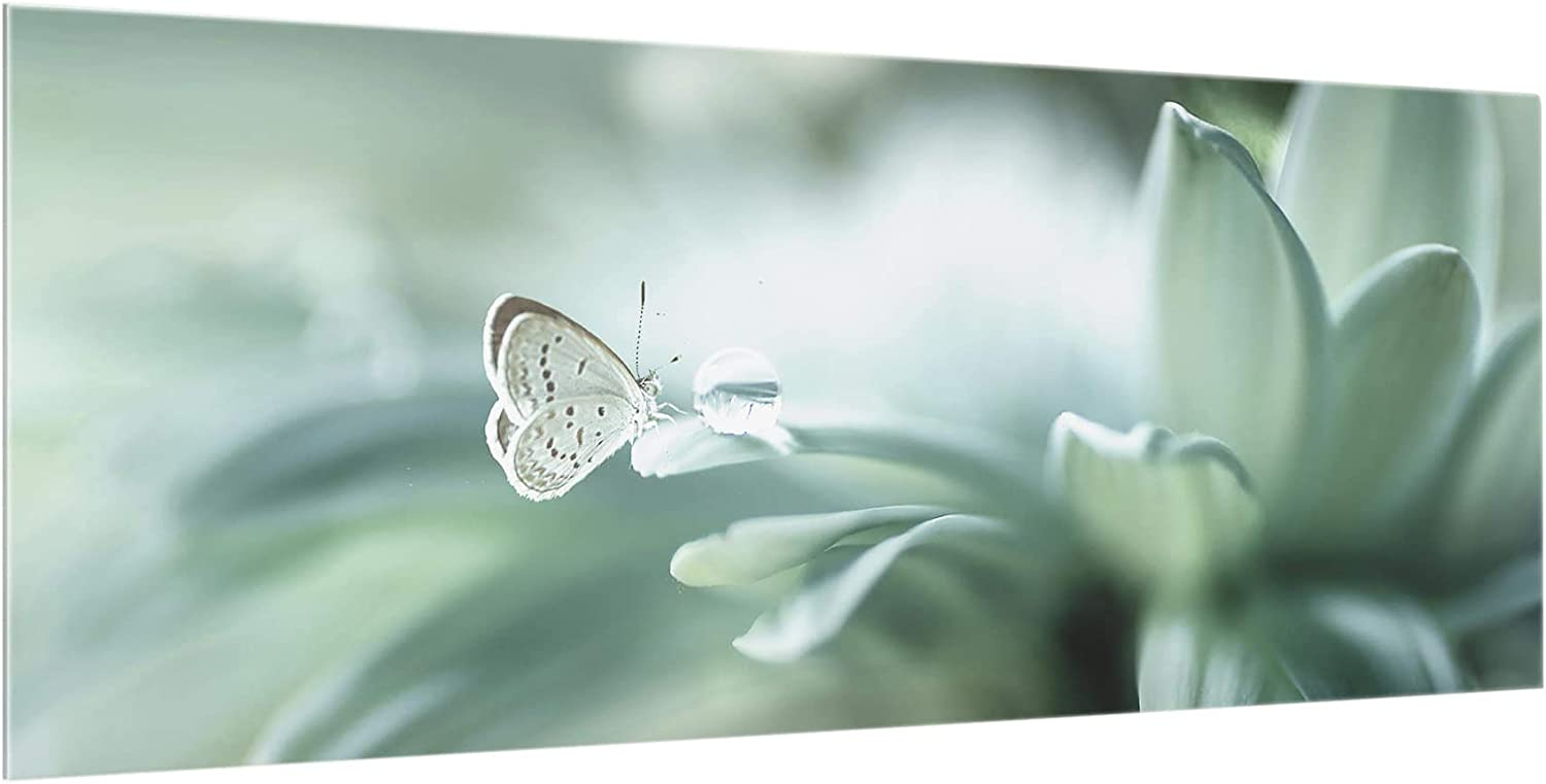 40x100 cm Cr/édence en Verre Butterfly and Dew Drops in Pastel Green Panorama