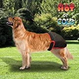 BUCKWHEAT FILLED HOT/COLD THERAPEUTIC DOG PANTS 75-100 LBS., BLACK, X-LARGE