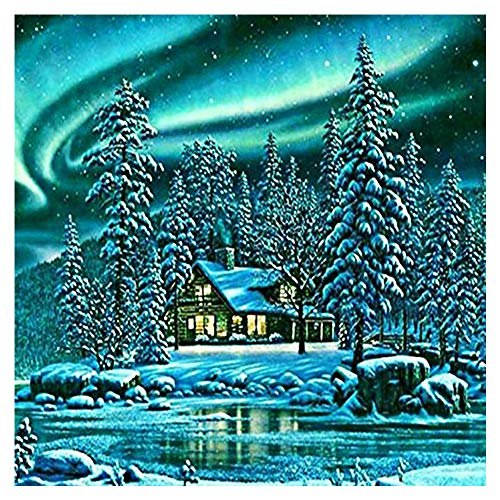 (Pan source DIY 5D Diamond Painting Cross Stitch Kit Crystals Crafts Embroidery Sticker Rhinestone Pasted 30x40CM Christmas Painted Cross Stitch, Birthday Present, Holiday Gift.(Snow)