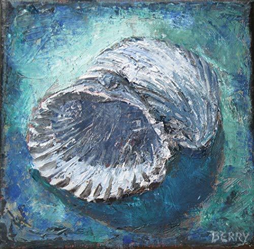 Gray Shells
