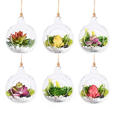 """3""""/4"""" Hanging Glass Globe Ball Candle Holders, Plant Glass Terrariums Pack of 6 (3"""") : Garden & Outdoor"""