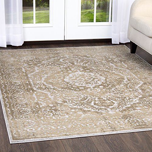 Home Dynamix and Nicole Miller   Kenmare Capri Area Rug   Polyester Indoor   Modern Style   Soft, Easy to Clean, Stain and Fade Resistant   Gray-Oat, 9' x 12'
