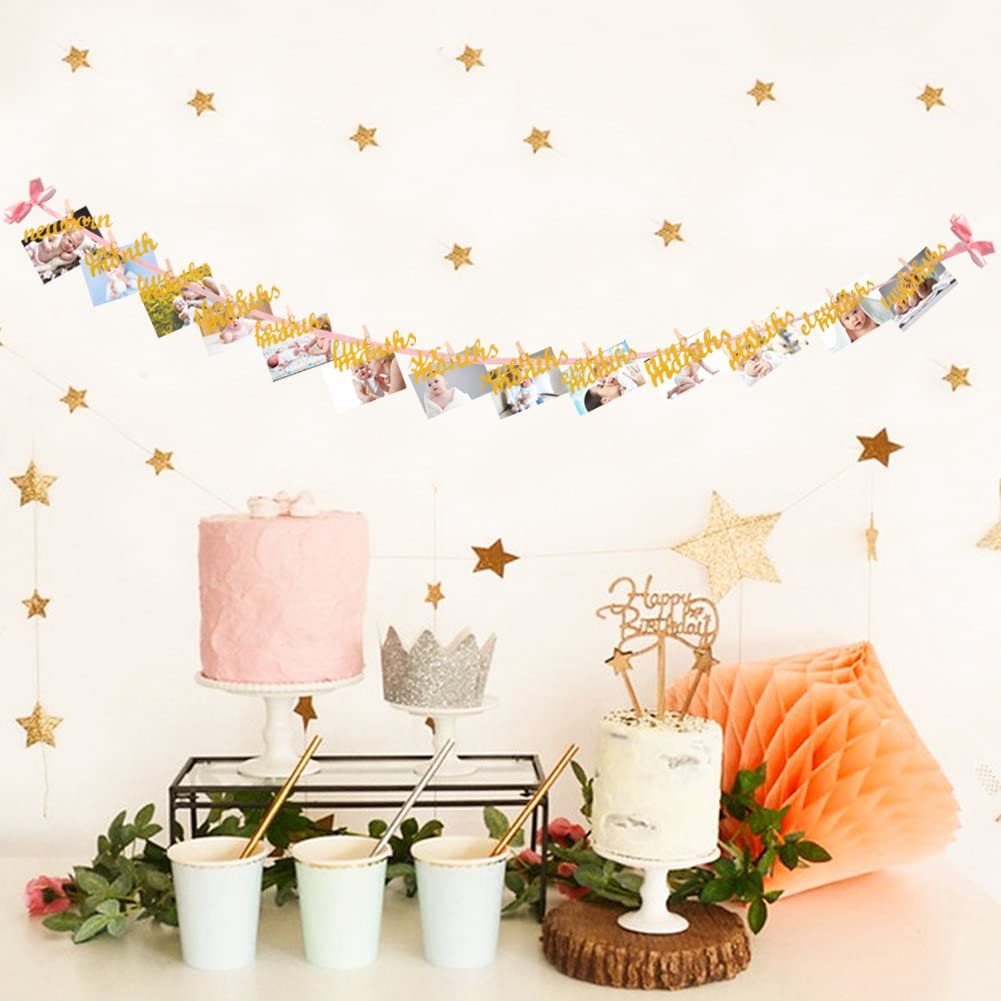 VGOODALL 12 Month Photo Banner Great Pink and Gold Milestone Photo Banner for First Birthday Party First Birthday Decoration