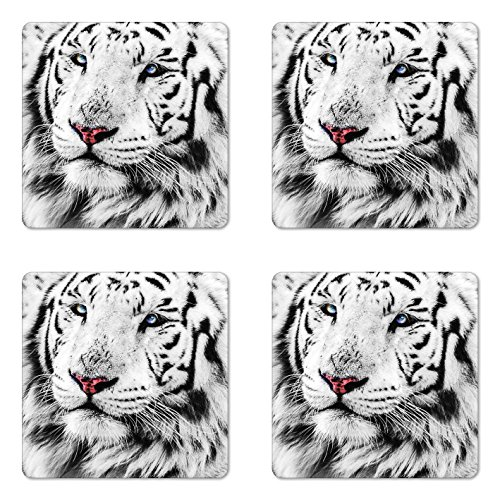 Ambesonne Safari Coaster Set of 4, White Tiger Wintertime Rare Animal Portrait Eyes Calm Noble Beast Photography, Square Hardboard Gloss Coasters for Drinks, White Black