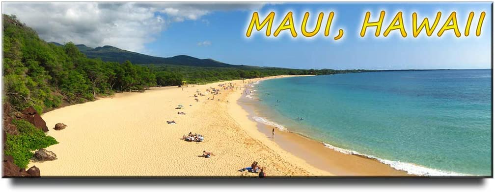 Maui panoramic fridge magnet Hawaii travel souvenir Makena State Park