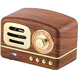 Eachbid Vintage Wireless Speaker 4.1 Chip Retro Radio Support FM Radio/TF Card/Micro USB Port Portable Songs Player HiFi Soun