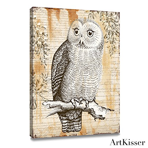 Framed Vintage Owl Bird Picture Painting Prints Canvas