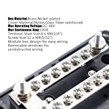 IZTOSS 100A 2 Way 6X M4 Screw terminals Module
