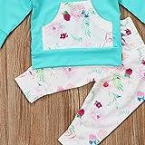 Baby Girls Long Sleeve Flowers Hoodie Top and Pants
